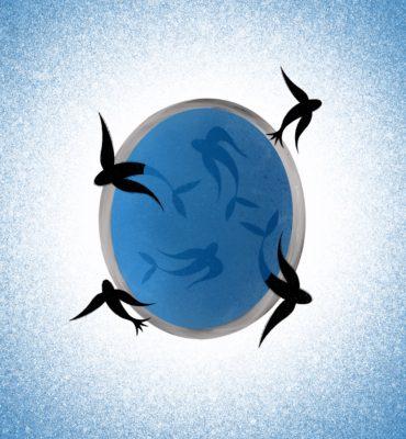 Марта Нусбаум – Не за профит